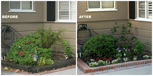Before After small planter