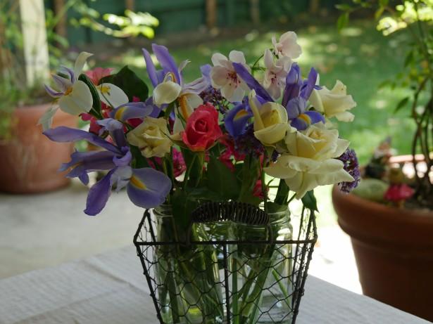 GH4 Flowers Photo
